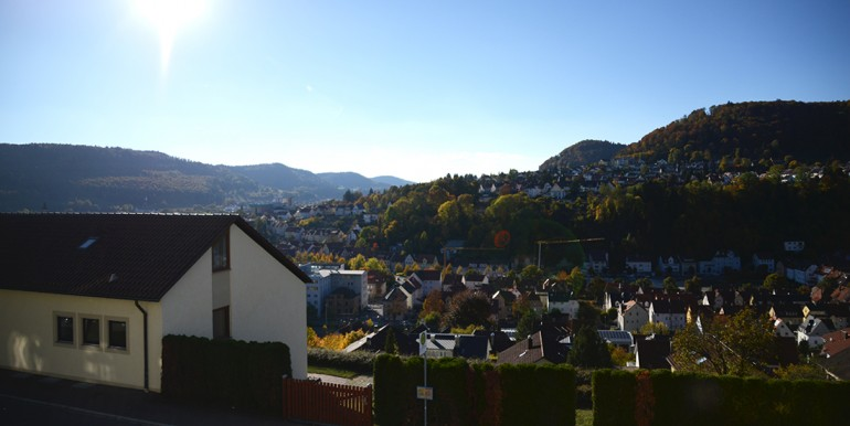 3 Ausblick Christian-Landenberger-Str