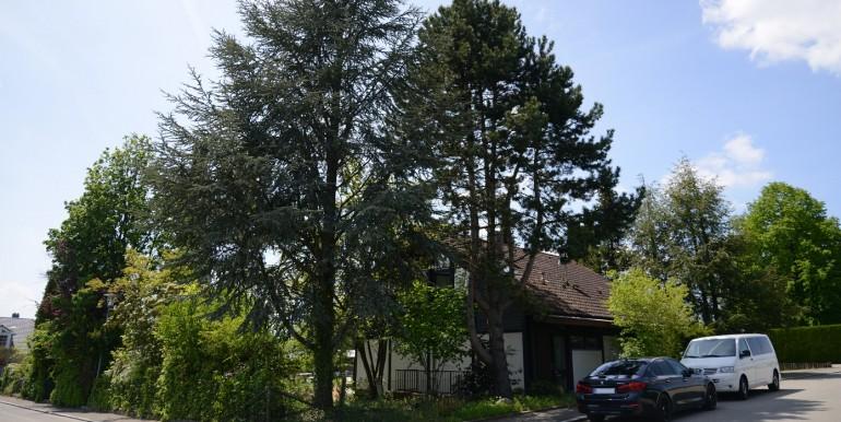 Einfamilienhaus Garten Bechtoldsweiler 5