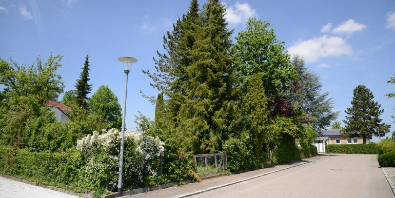 Einfamilienhaus Garten Bechtoldsweiler 6