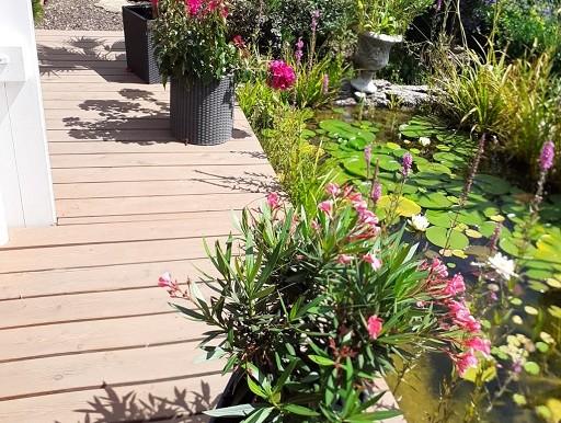 Garten 2 Einfamilienhaus Tailfingen