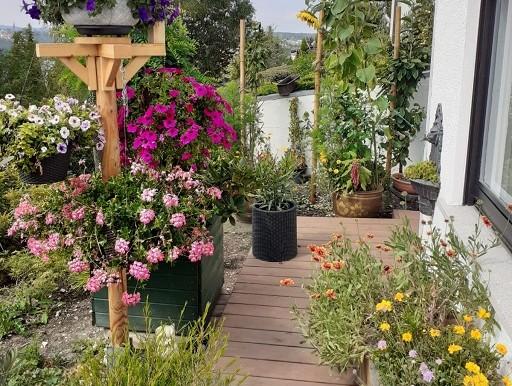 Garten Einfamilienhaus Tailfingen