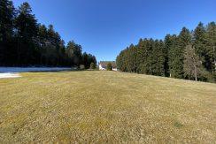 6000 m² Grundstück und ein Haus
